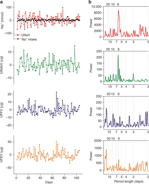 Variability of urinary sodium and hormone excretion during long-term constancy ...