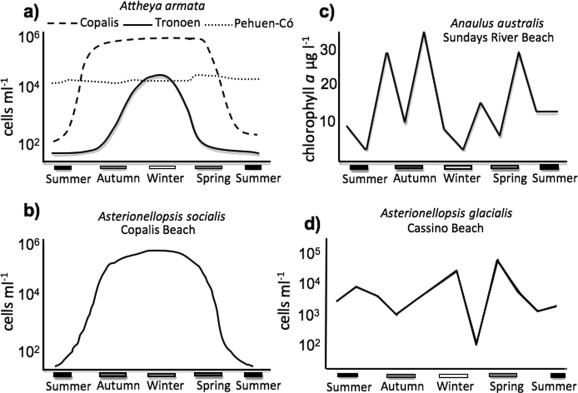 Seasonal variation of abundance or biomass of (a) Attheya armata at the beaches ...