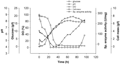 Improvement of carbonyl reductase production of Geotrichum candidum for the transformation of 1-acetonaphthone to S(-)-1-(1'-napthyl) ethanol [An article from: Bioresource Technology] M.S. Bhattacharyya and U.C. Banerjee